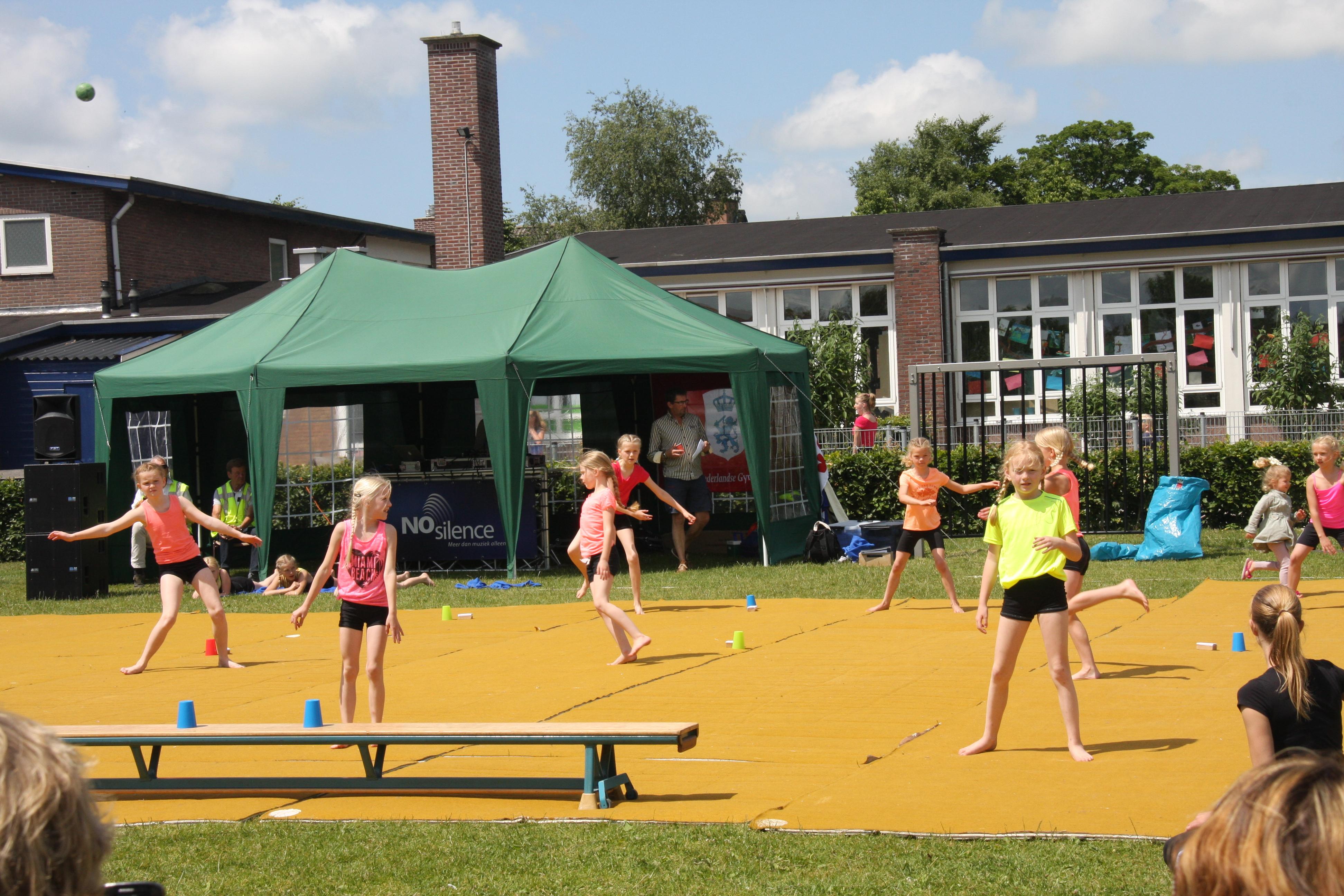 gymnastiekuitvoering-juni-2015-015
